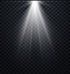 Spotlight light effect vector