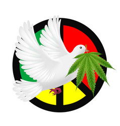 white pigeon flying with marijuanas and peace logo vector image