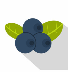 fresh blueberries with leaves icon flat style vector image