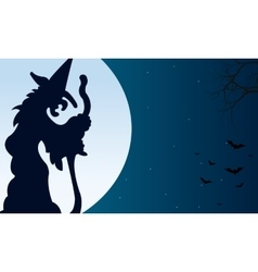 Silhouette of witch and bat Halloween vector image vector image