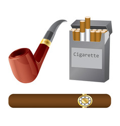 set of a pipe cigar and cigarette vector image