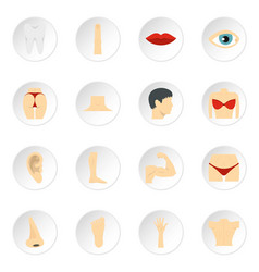 body parts set flat icons vector image