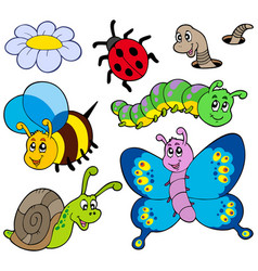 garden animals collection vector image