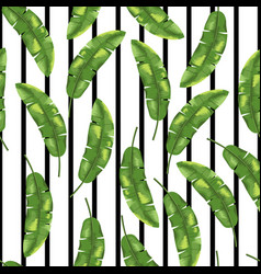 green banana leaves on black and white background vector image