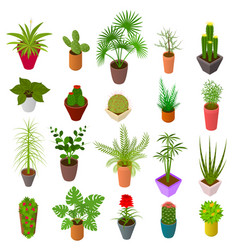 Green plants in pot set icons 3d isometric view vector