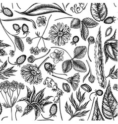 seamless pattern with black and white aloe vector image