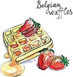 Watercolor belgian waffles vector