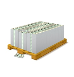 Pack of banknotes on a wooden pallet vector image