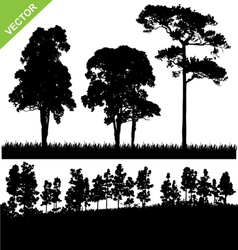 Tree and forest silhouette vector image vector image