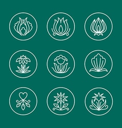 Set of Thin Line Floral Design Elements for Logos vector image vector image