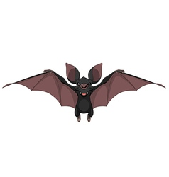 Funny bat smiling vector