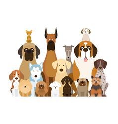 group dog breeds vector image