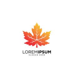 maple leaf logo design vector image