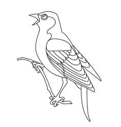 song bird 1 vector image