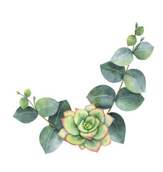 Watercolor wreath with eucalyptus leaves vector