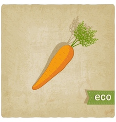 carrot eco background vector image vector image
