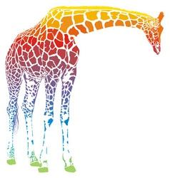 rainbow giraffe vector image