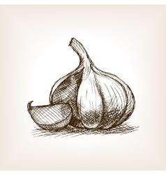 Garlic sketch style vector image