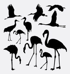 Flamingo in action silhouettes vector