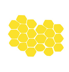 Honeycomb yellow isolated on white background vector