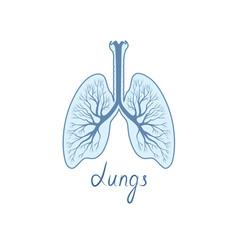 Lungs sign human internal organ anatomy icon vector