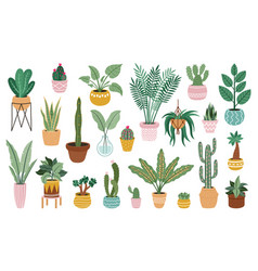plant in pots home potted plants flower house vector image