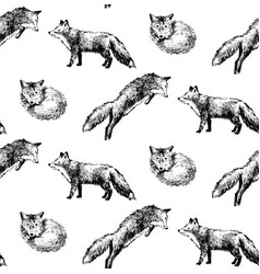 Seamless pattern with hand drawn foxes vector