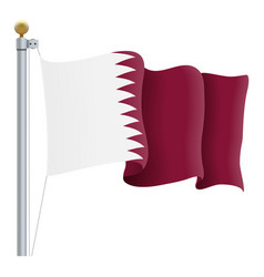 waving qatar flag isolated on a white background vector image