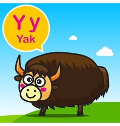 Y Yak color cartoon and alphabet for children to vector