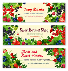 banners of fresh berries for berry shop vector image vector image