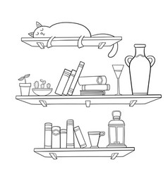 books cat and other things on the shelves vector image