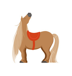 Cute pony with saddle thoroughbred horse vector