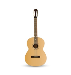 Acoustic classic guitar vector image