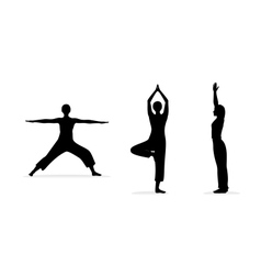 fitness women silhouettes vector image