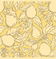 Bergamot seamless pattern vector