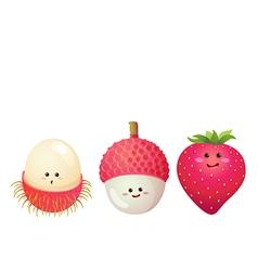 Cute fruits strawberry lychee litchi rambutan vector