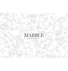 Grey and white marble texture background vector