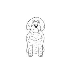 Labradoodle cartoon dog icon vector