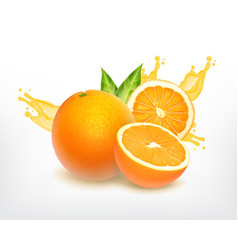Orange fruit with slice vector