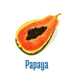 Papaya half cut icon with seeds Fruit emblem vector image