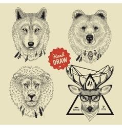 sketch wild animal heads bear wolf deer vector image