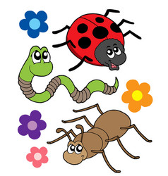 Various bugs collection vector