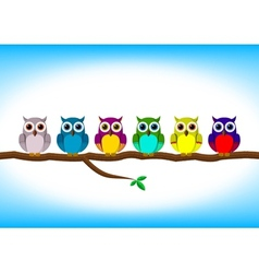 Funny colorful owls in a row vector image vector image
