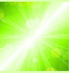 summer lights vector image vector image