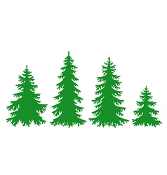 silhouettes of fir-trees vector image vector image