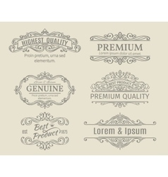 Banners Labels Frames Calligraphic Design vector