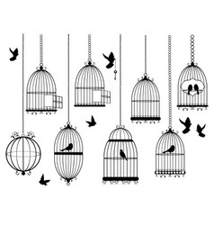 cages vector image