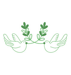 Silhouette cute doves animal with branches to vector