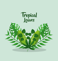 Tropical leaves branch palm botanical card vector
