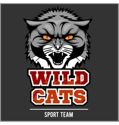 Wild cat head - design for logo and sport emblem vector